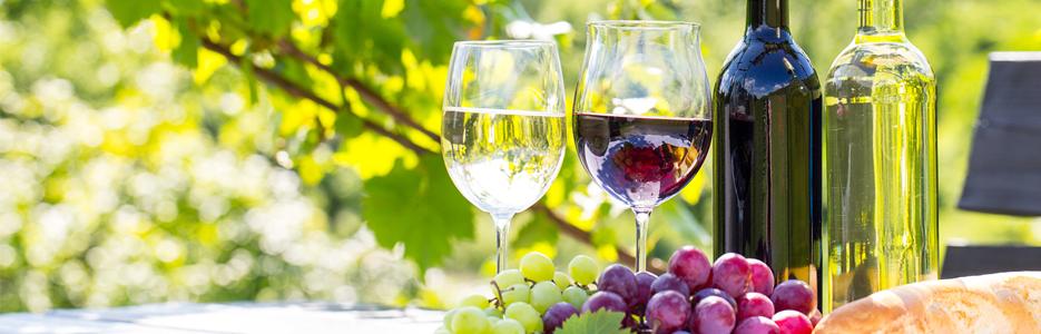 Limbajul vinului bun