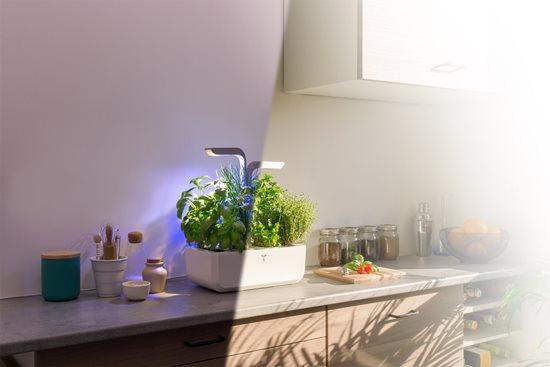 "Jardiniera ""SMART Garden"" 33 x 18,5 x 45 cm, Arctic White - Veritable"
