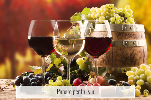 Pahare pentru vin